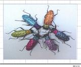 SPARKLING  COLORFUL BEETLES NOTE/GREETING CARD